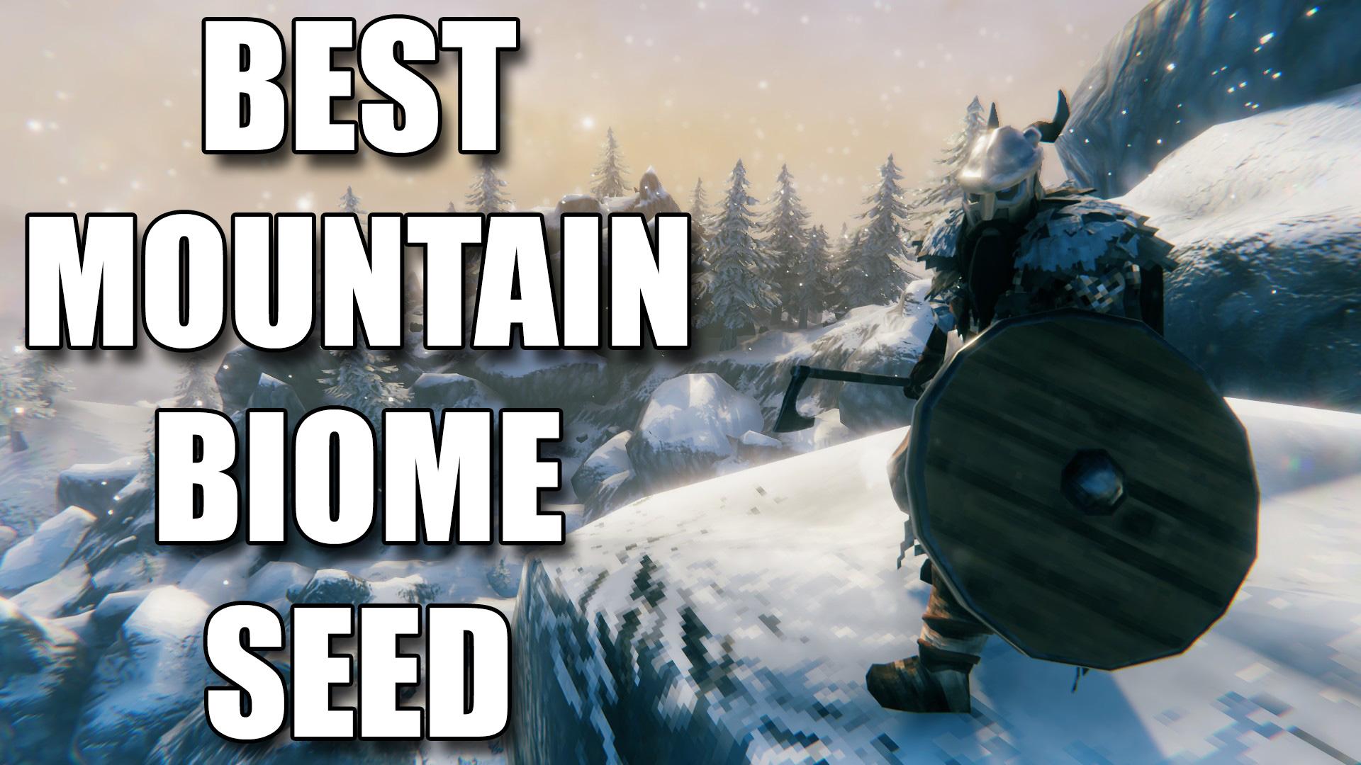 Valheim Best Mountain Biome Seed